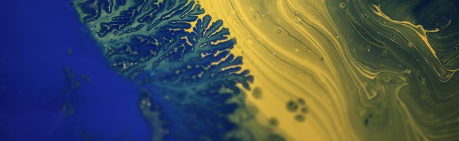 Life Sciences Sector Update – Q4