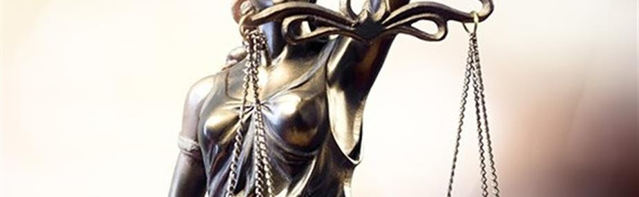 No one is above the law—the importance of advancing the rule of law