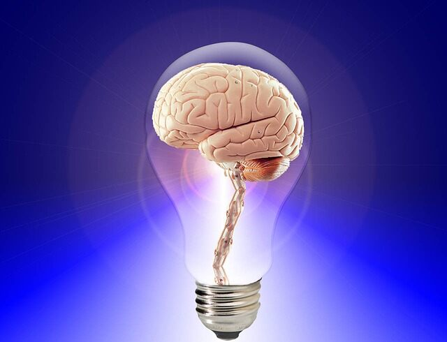 Lightbulb and brain representing power of knowledge