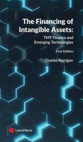 The Financing of Intangible Assets: TMT Finance and Emerging Technologies cover