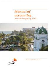 Manual of accounting - Narrative reporting 2019 eBook cover